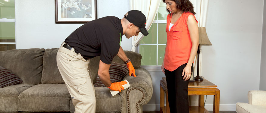 Little Rock, AR carpet upholstery cleaning
